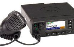 Motorola Mobiles DM4000e